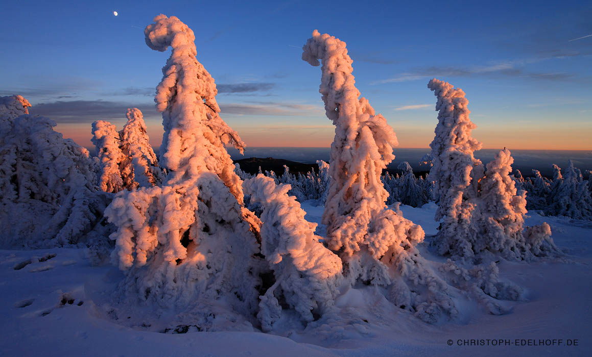 IMG_7496_winter_harz-web